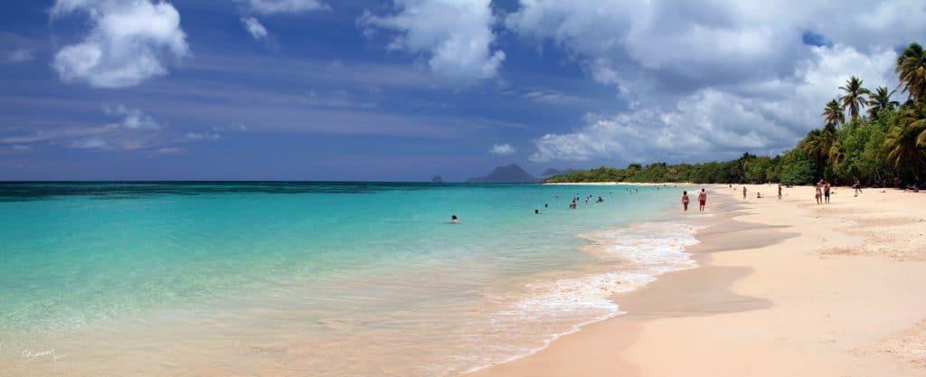 Grande Anse des Salines Martinique